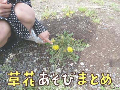 草花遊びまとめ