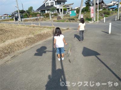 秋のお散歩遊び