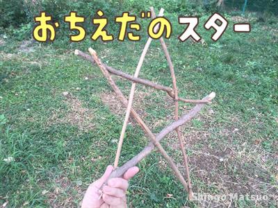 落ちた枝を使ったスターの作り方