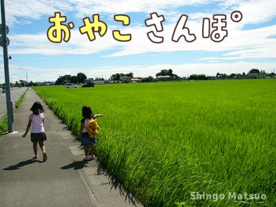 春夏秋冬 親子の散歩遊び