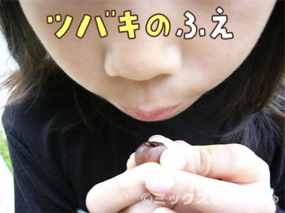 椿の種の笛の作り方