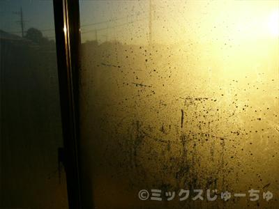結露冬の窓