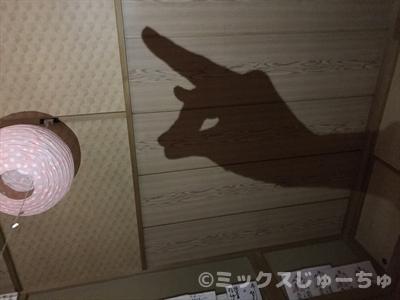 天井や壁に影を映す