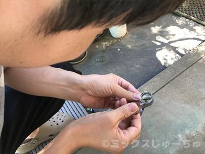 虫眼鏡で観察する遊び
