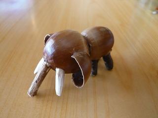 ドングリのゾウ